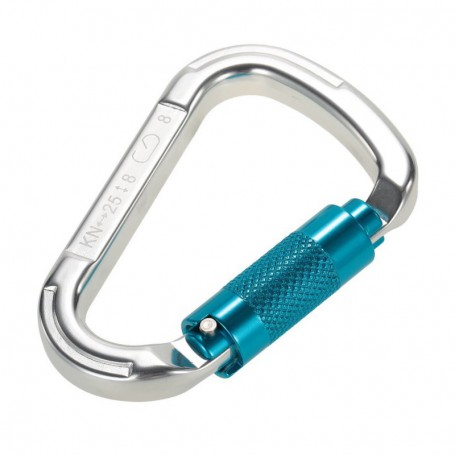 Stainless Steel D-Shackle